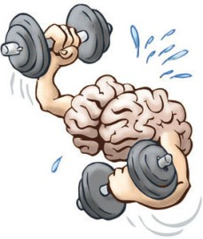 Brain on excercise: Brain Training